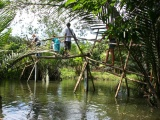 monkey bridge 4