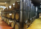 LACERTA Winery 4